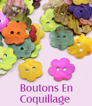 Boutons En Coquillage